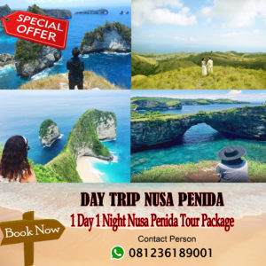 1 Day 1 Night Nusa Penida Tour Package
