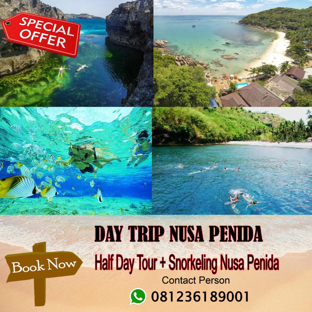 Half Day Tour Snorkeling Nusa Penida Call 6281236189001 Paket Trip Bali