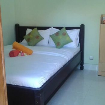 Green Palm Homestay@daytripnusapenida.com