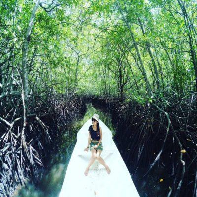 Mangrove Forest Nusa Lembonga@daytripnusapenida.com