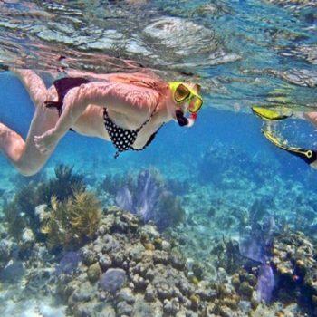 snorkelingnusapenida@daytripnusapenida.com