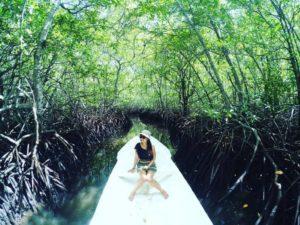 Mangrove- Forest@daytripnusapenida.com